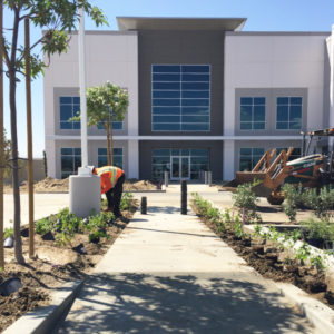 WIPC Landscaping Fourth Phase